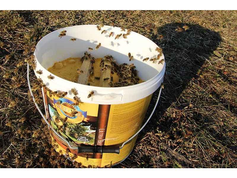 Lista distribuitori autorizati ai produsului Ultra Bee (varianta originala)